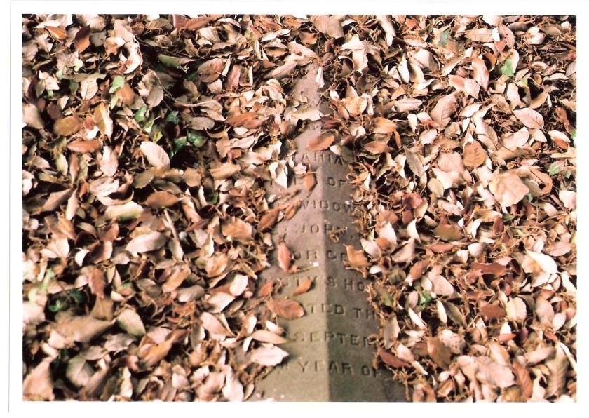 Gravestones in Bath