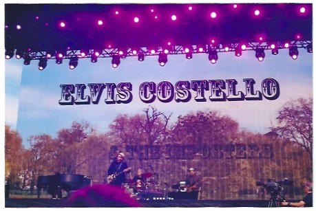 Elvis Costello, Hyde Park Calling, 2013 : Photo - Laura Peta
